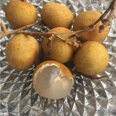 小さめのライチのような形の果実です。体力回復効果にも期待できます。